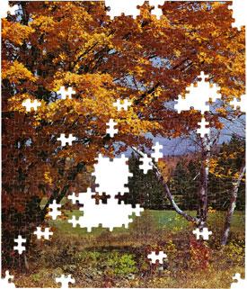 Join the Yellow Tree Granfalloon